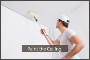 Step 4: Paint the Ceiling