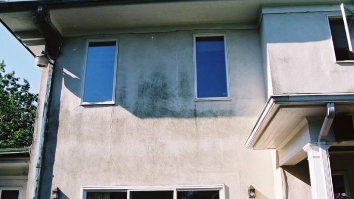 What is anti mold paint
