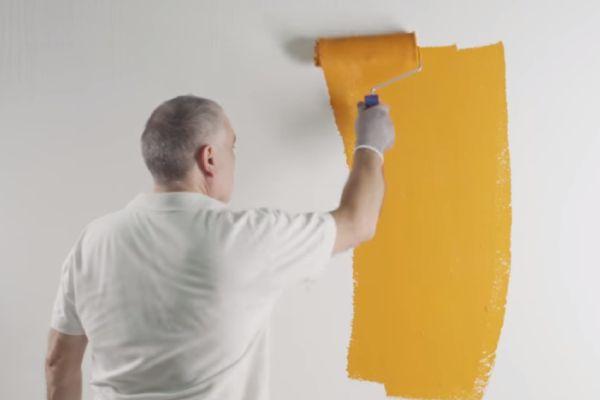 Latex Enamel Paint Review – A Perfect Paint Combination