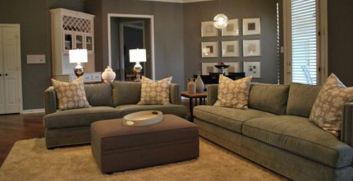 Living Room With Brown and Grey
