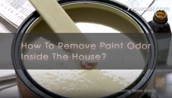 How To Remove Paint Odor Inside The House? 7 Easiest Tips